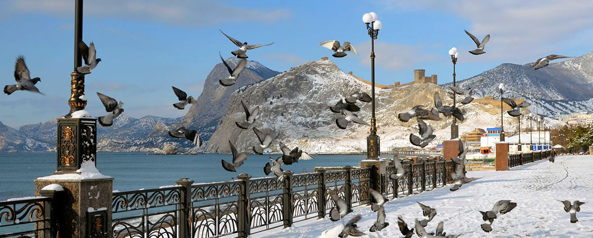 Погода в январе фото