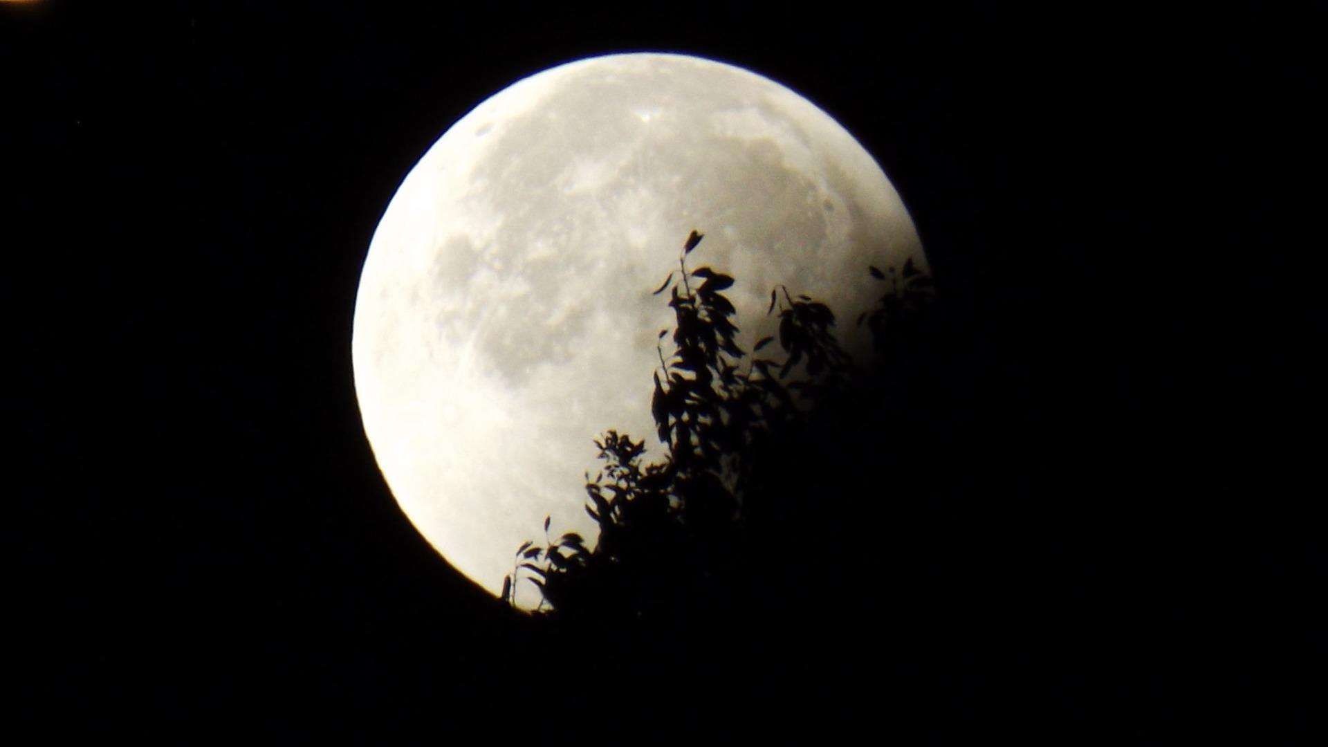 Смена лунных фаз фото