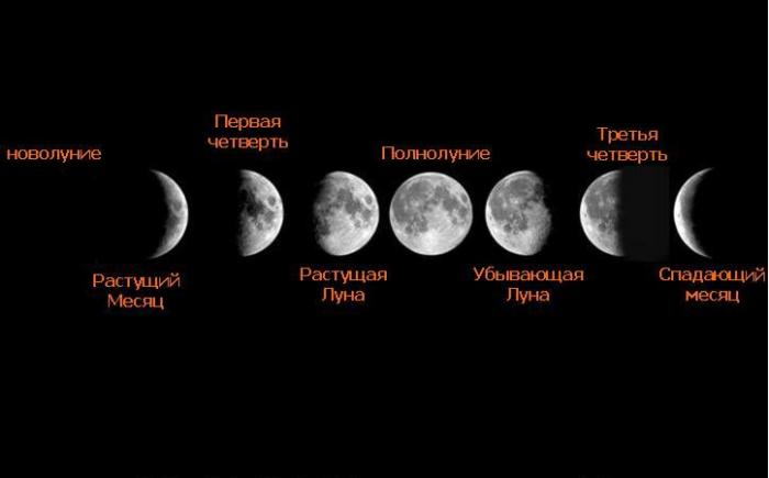 Цикл Луны фото