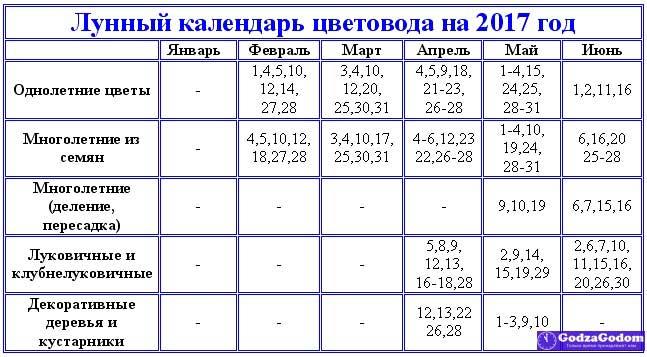 Лунный календарь садовода и огородника на 2020 года таблица май июнь июль