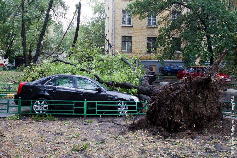 Ураган в Москве сейчас 29 мая 2020. Список погибших. Фото и видео