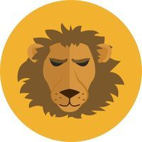 Астропрогноз на 2020 год для Льва