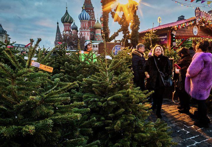 Адреса елочных базаров в Москве