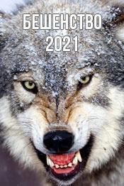 Бешенство - фильм 2021 года