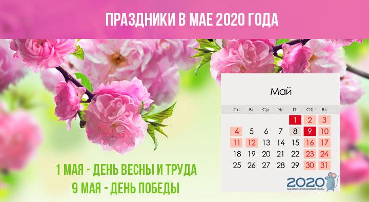 Майские в 2020 году календарь
