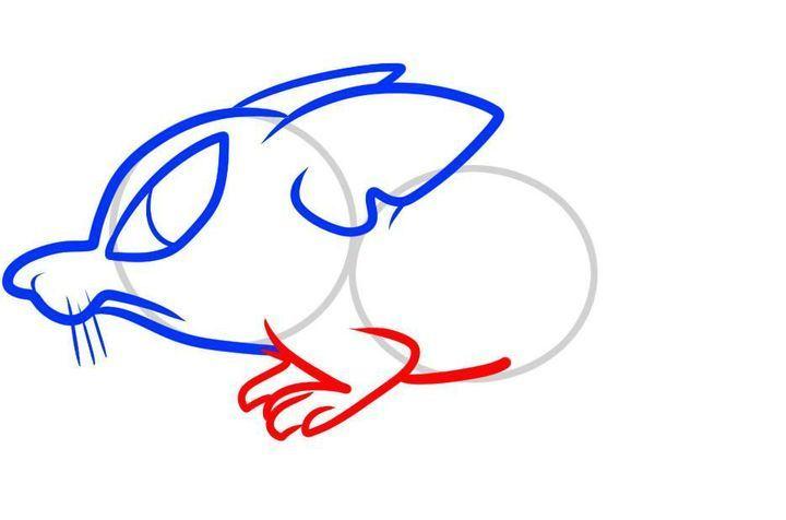 Как нарисовать крысу пошагово