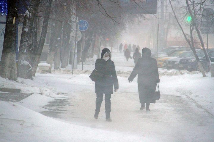 Зима на Кубани в феврале
