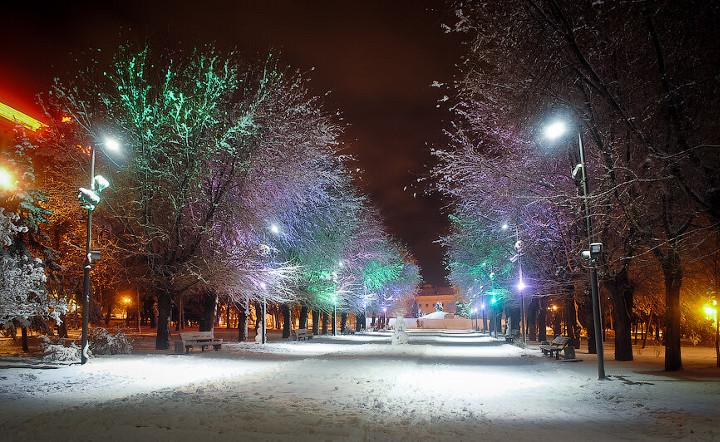 аллея ночью в снегу