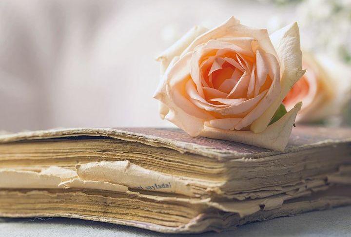 Старинная книга и роза