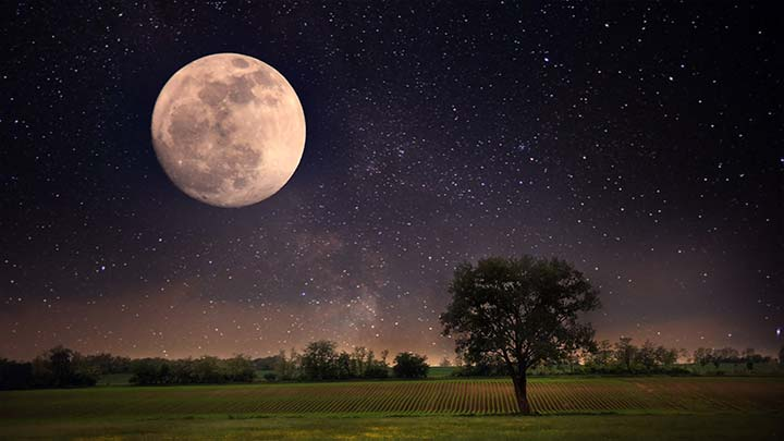 полная луна над полем