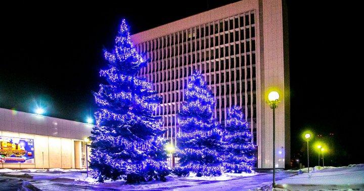 наряженные елки на улицах города