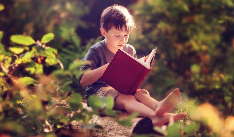 Мальчик читает в лесу