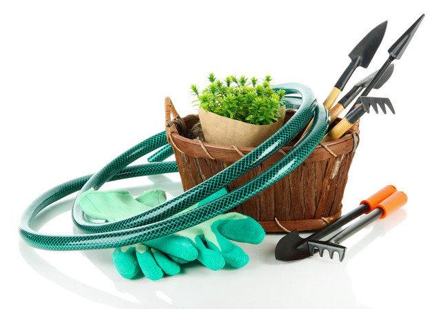Изменения, которые внесены в Закон о садоводстве и огородничестве фото