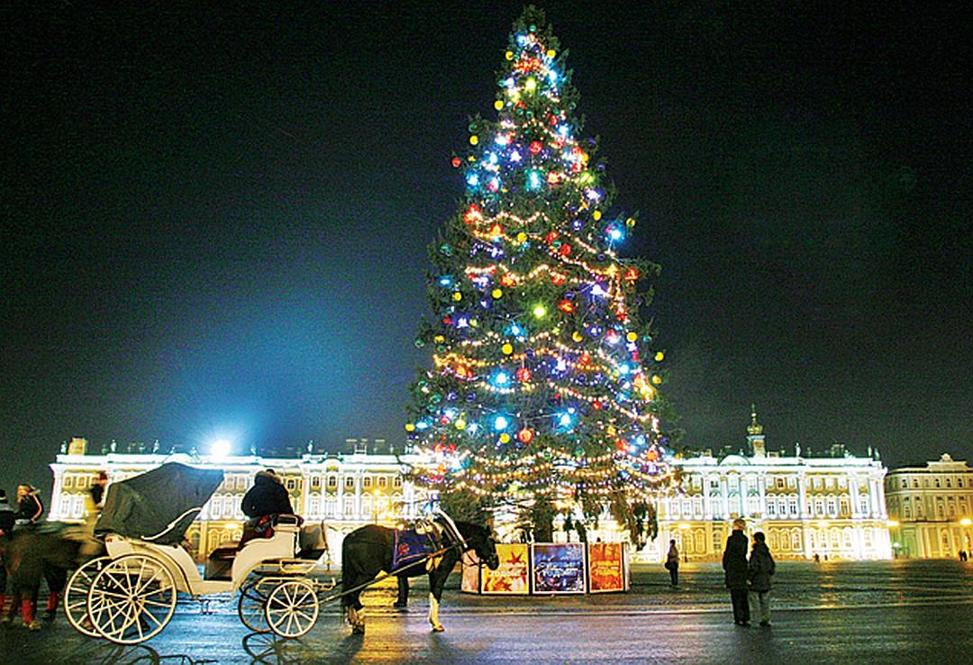 Новогодние елки в Санкт-Петербурге фото