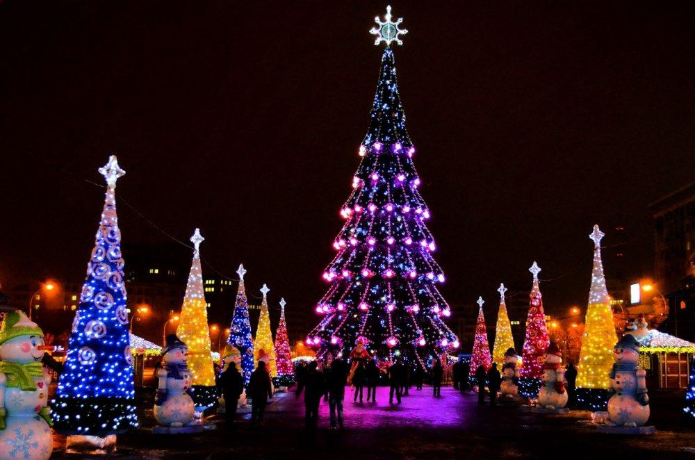 Почему бы не встретить Новый год в Воронеже фото