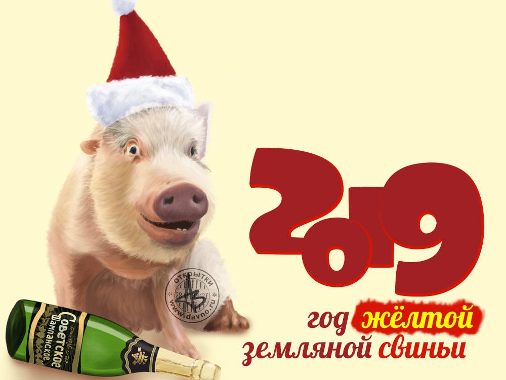 Приколы на Новый 2019 год фото