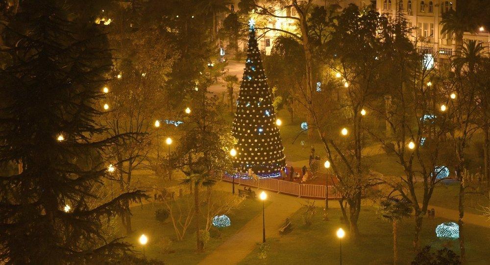 Цены на отдых в Абхазии фото