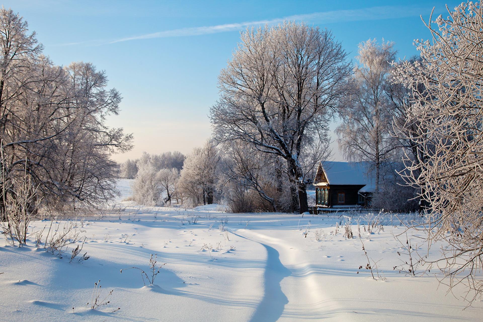 Особенности климата в России фото
