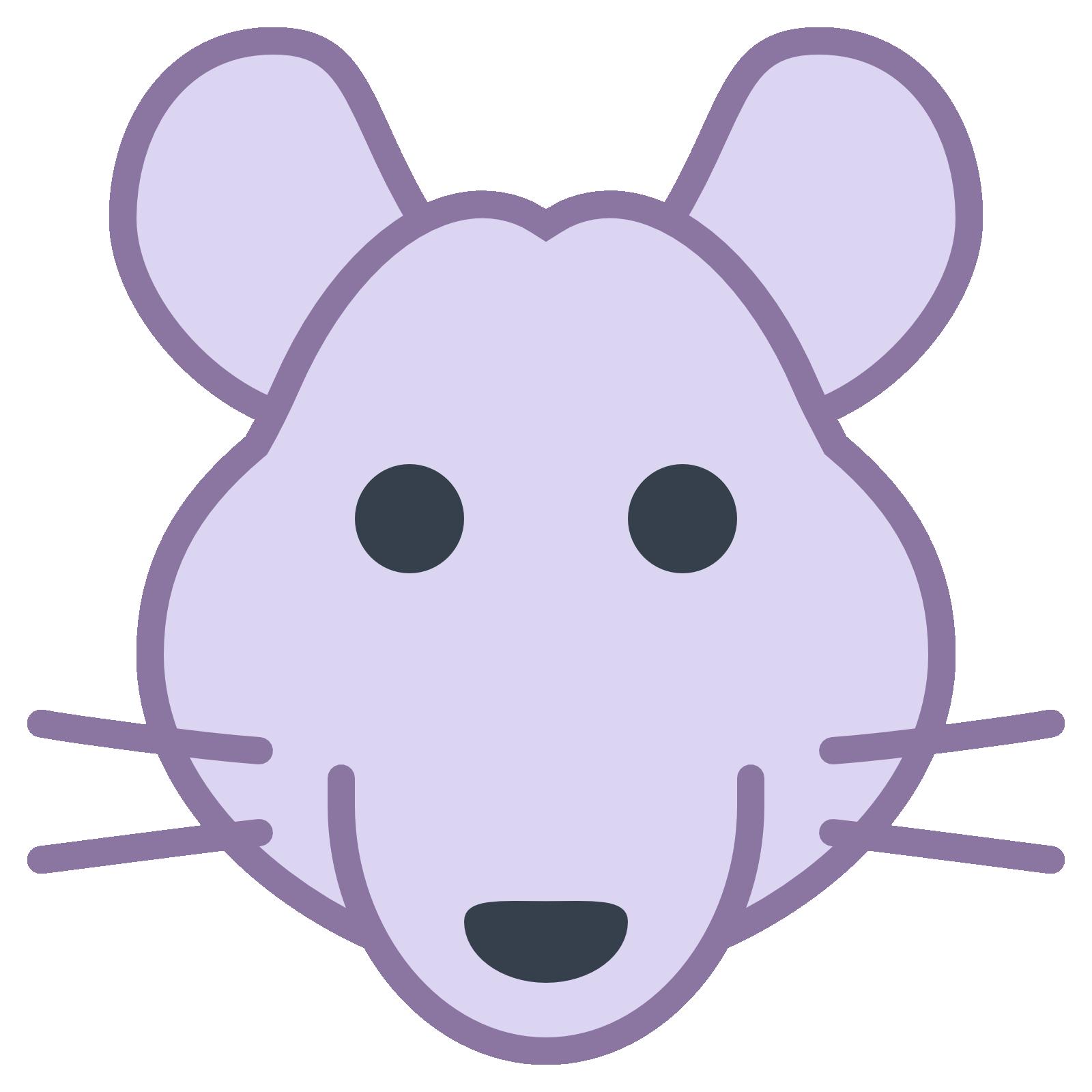 2020 - Год Крысы